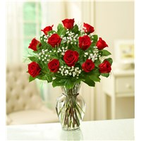 a-dozen-classic-red-roses-perfect-gift